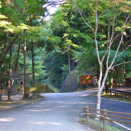 ถนนคุมาโนะเก่า แหล่งมรดกโลก