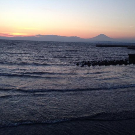 Tiny But Beautiful: Enoshima Island