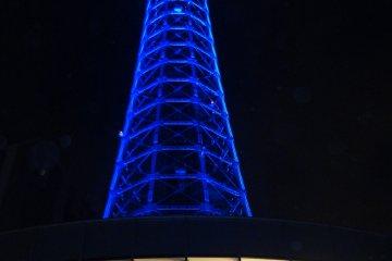 <p>Marine Tower</p>