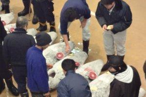Misaki Fish Market