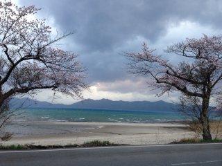 Hoa anh đào tạo khung cho hồ nước màu xanh sapphire với bãi biển đầy cát