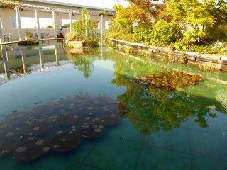 大塚国際美術館の庭に再現されたモネの「大睡蓮」