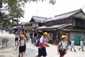 ทางเดินไปยังวัดโทะไดจิ (Todaiji) เต็มไปด้วยร้านค้า ผู้คน และกวางนารา
