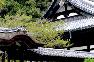 Kaizan-do and Kangetsu-dai (Moon viewing deck) of Kodaiji Temple