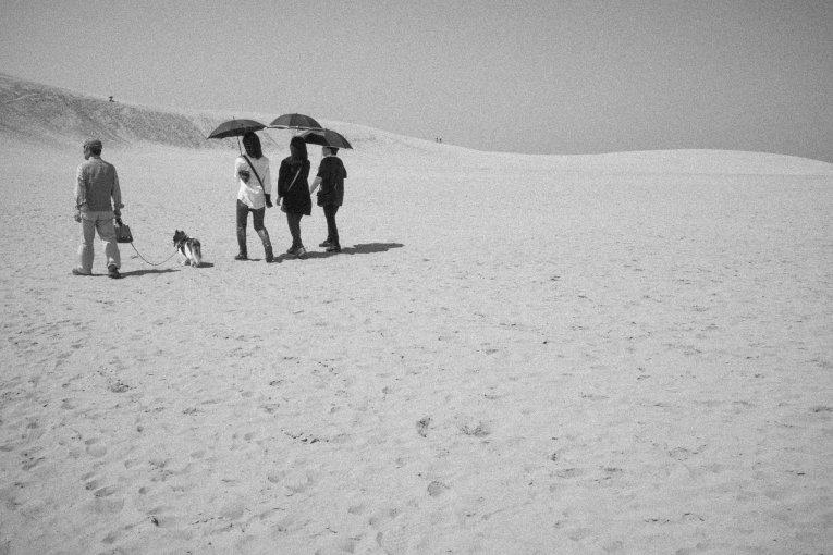 Dạo quanh đồi cát Tottori