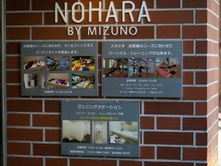 Nohara by Mizuno