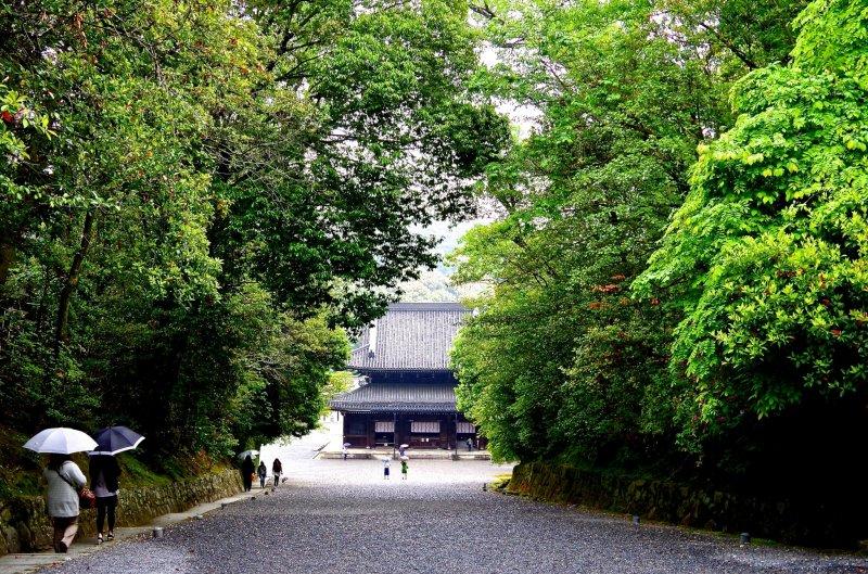 <p>Sennyu-ji Temple is hidden in a deep forest</p>