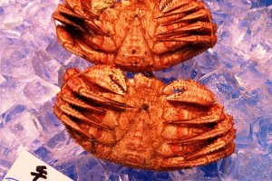 Fresh crab from Hokkaido delivered to your convenience in Kyoto