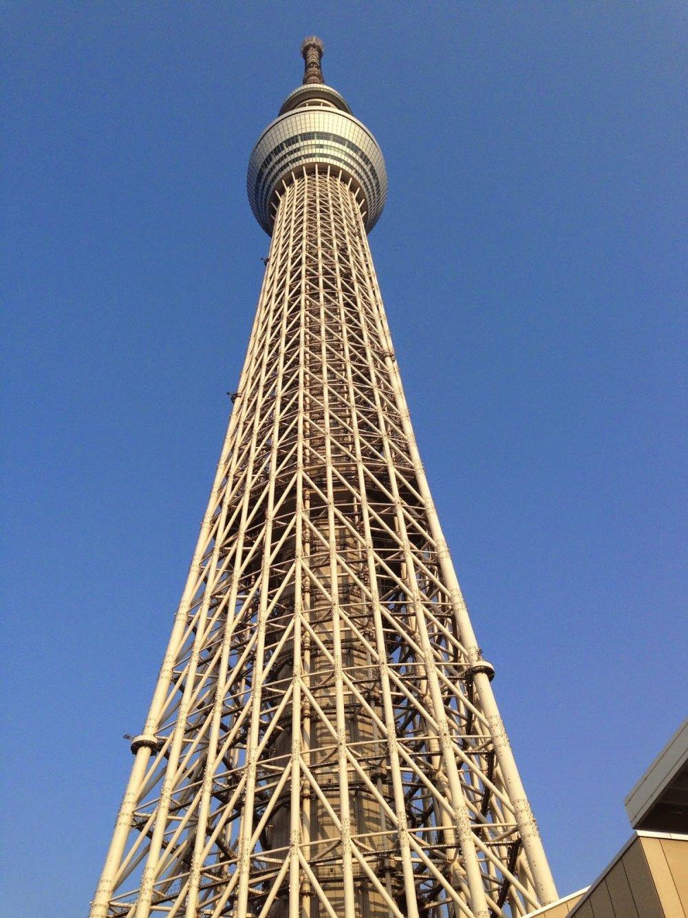 탑은 아래에서 볼 때 실제로 아름답다