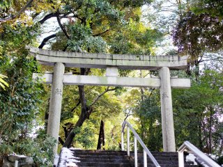 The beautiful entrance to the shrine has some traditional torii as well as some contemporary stairs.