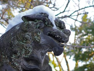 This is one of the many lion type guardians of the shrine, here I suppose he's not happy about wearing a snow hat.