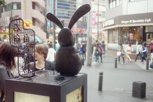 The rabbit statue watching the street