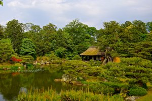 Shokin-tei teahouse and pond