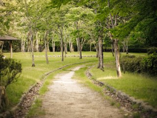 The path less traveled is always the one which interests me the most.