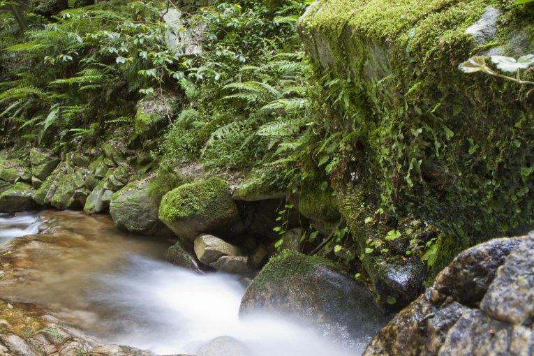 Ochozu Falls Campsite