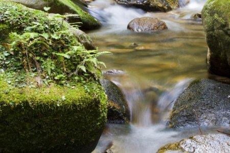 Dọc theo đường mòn Ochozu Falls