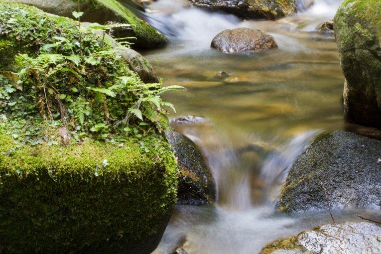 御手洗の滝 ハイキングコース