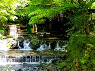 Clear stream of Kifune River
