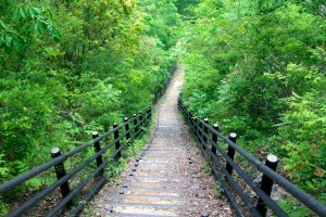 Steps leading down to Ryujin Valley floor