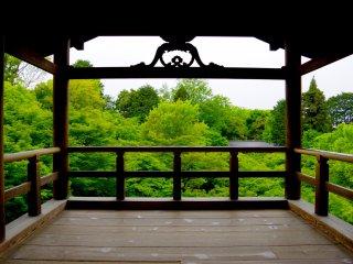 Vista do terraço de madeira para o vale verde