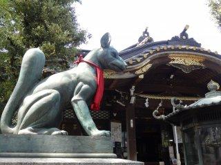 อินะริ (Inari) หนึ่งในเทพเจ้าของลัทธิชินโต