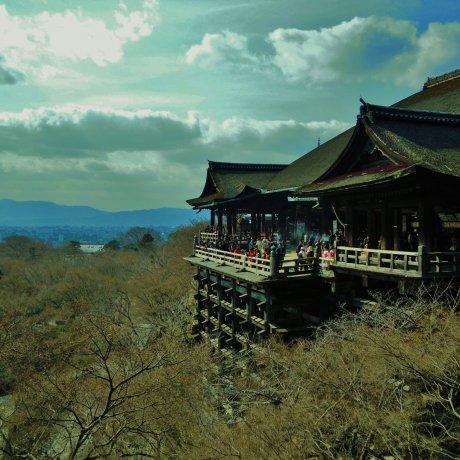 Kiyomizu Temple in Early Spring