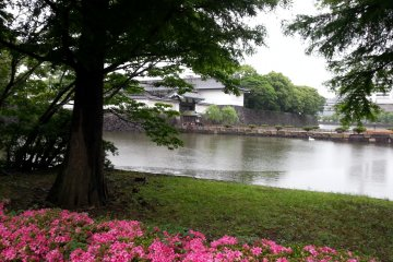 <p>Looking towards the Imperial Palace East Garden entry gate</p>