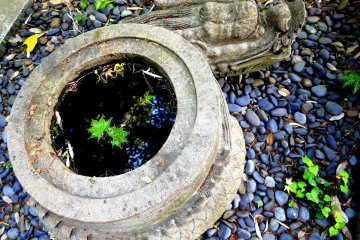 <p>Small water basin that looks like a coiled dragon</p>