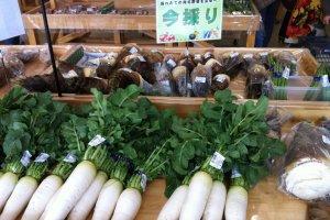 Fresh daikon radishes and bamboo shoots