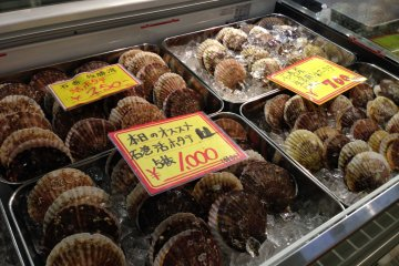 <p>Scallops from&nbsp;Ishinomaki</p>