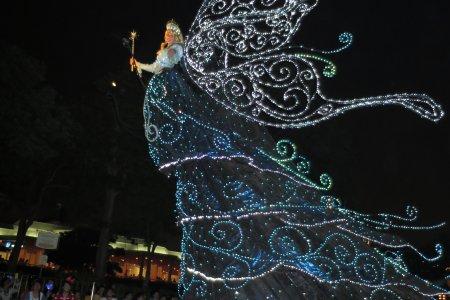 Фантастическая ночь в Токийском Диснейленде