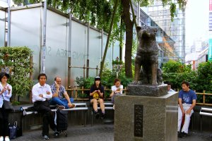 รูปปั้นฮาจิโกะ (Hachiko) จุดนัดพบยอดนิยมของชิบุย่า
