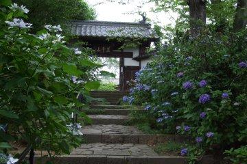 Shifuku-ji Zen Temple in Sendai