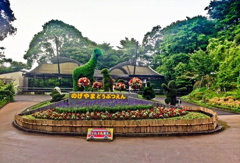 Image result for Yokohama Zoo