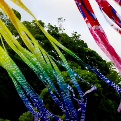 เทศกาลดวงดาวที่ศาลเจ้าฮะชิมัน-กุ