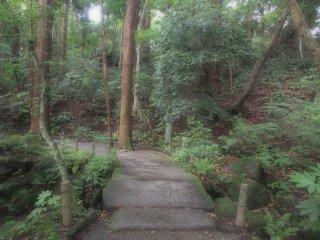 เส้นทางเดินภายในสวน