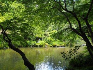 สวนอันร่มรื่นแห่งนี้มีอากาศเย็นสบายแม้ในวันที่มีอากาศอบอ้าวในฤดูร้อน เป็นที่ผ่อนคลายที่ดีหลังจากชมวัดนาริตะซานที่คึกคัก เต็มไปด้วยผู้คน