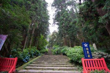 Нужно подняться, чтобы попасть к входу в Дзуиходэн