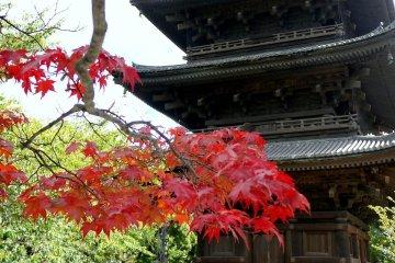 Di sản Thế giới chùa Toji