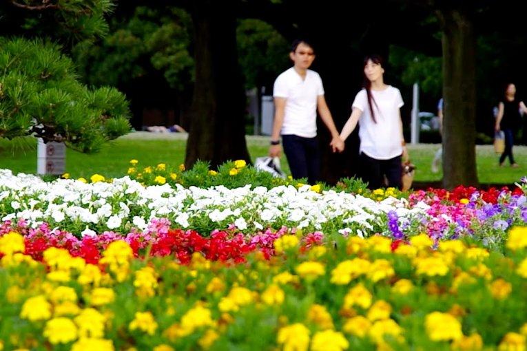 Насладитесь днём в парке Ямасита