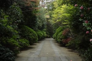 Passing through the entrance gate, a stone pavement with well-kept plants leads you to the grounds.