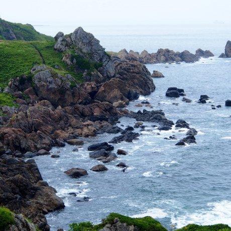The Tanesashi Coast Promenade