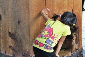 东大寺,一个小孩在看大人钻成功洞