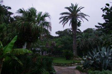 산책할 곳이 많은 식물원