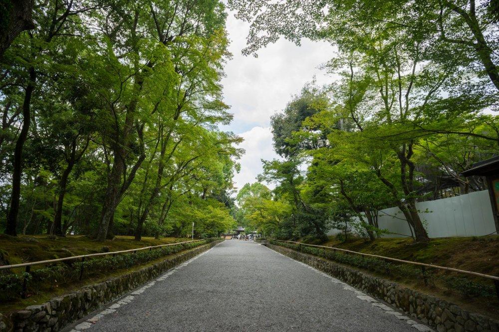 Pintu masuk ke Kuil Kinkakuji.