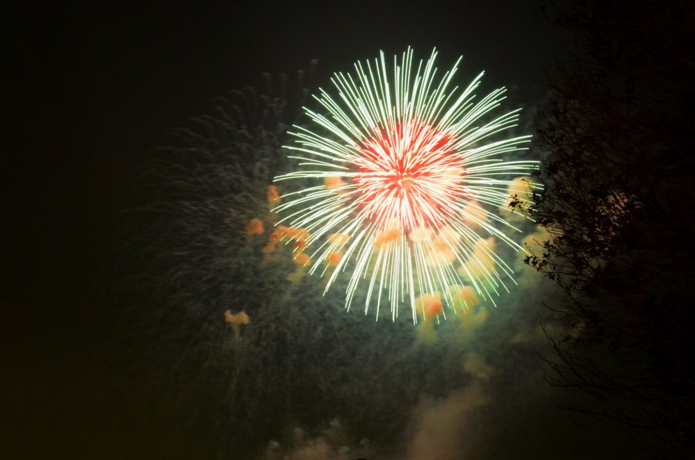 Beautiful firework display at Tachikawa Showa Kinen Park!