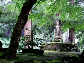 Statue of Goddess of Mercy in a green forest