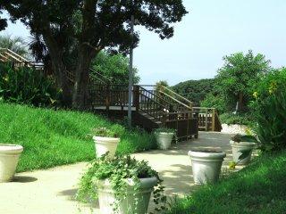 植物园外的风景