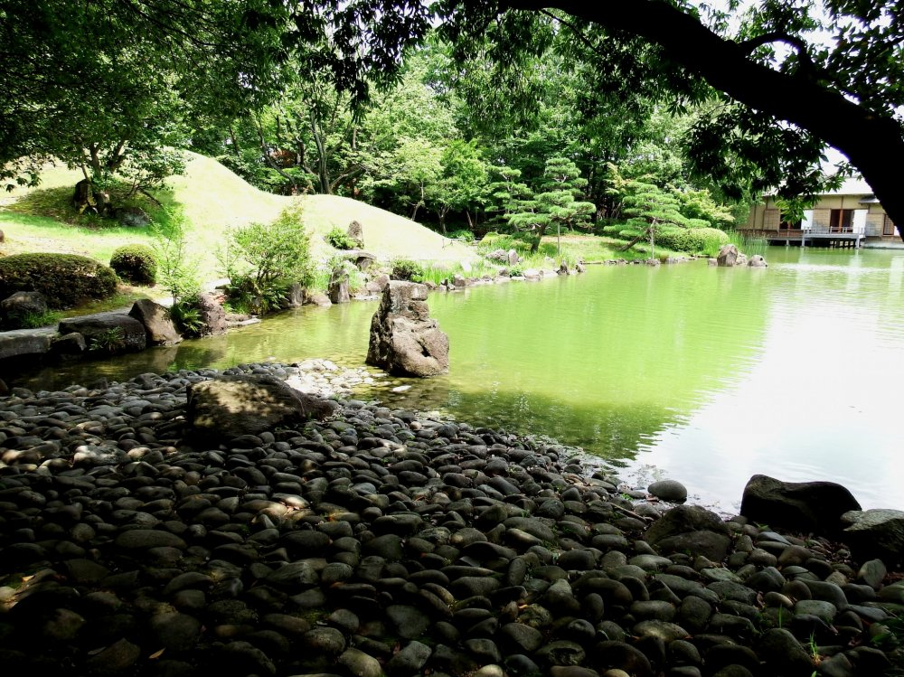 Cobblestones and rocks at the edge of the garden's green pond