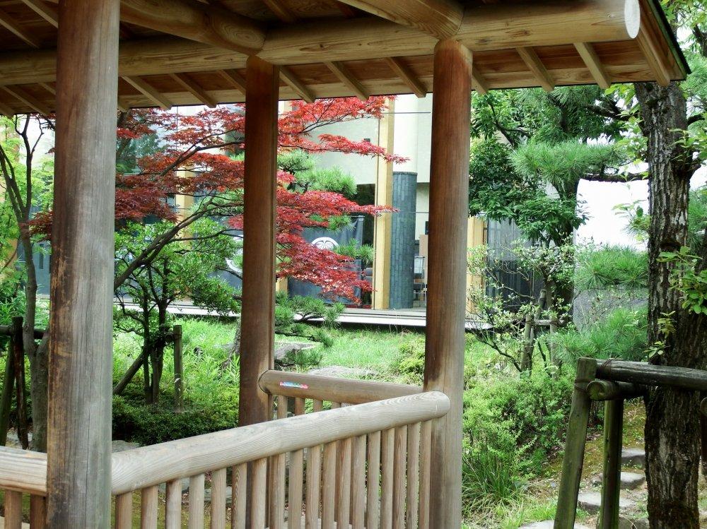 Olhando para as janelas do Museu de História da Cidade de Fukui a partir de um pequeno pavilhão no parque Osensui
